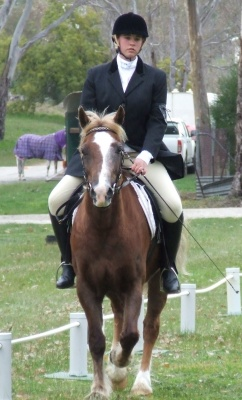 gypsy_dressage_comp2012_400